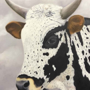 Oil on Canvas For Sale_Nguni-on-Canvas-14