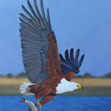 Oil on Canvas For Sale_Fish-Eagle