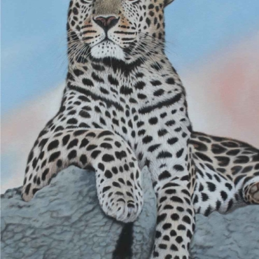 Oil on Canvas For Sale_Leopard-on-the-lookout