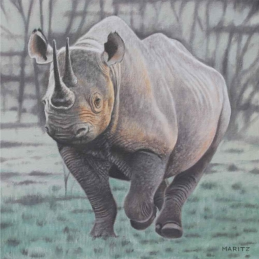 Oil on Canvas For Sale_Save-the-Rhino