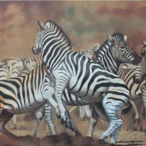 Oil on canvas Sold_Fighting-Zebra