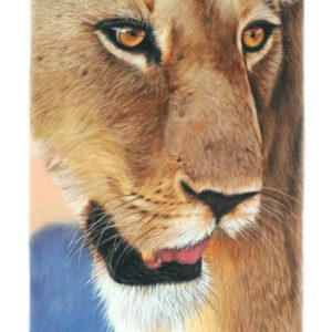 Oil on canvas Sold_Lion-Gazing