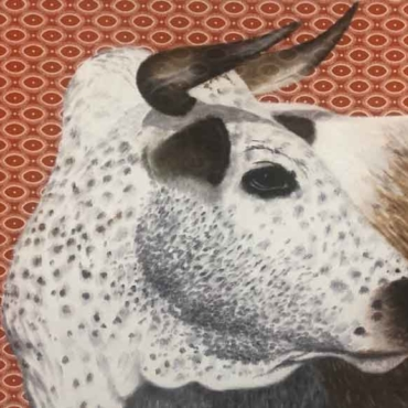 Oil on Shweshwe For Sale_Nguni-on-Shweshwe-201