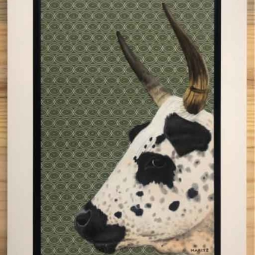 Oil on Shweshwe For Sale_Nguni-on-Shweshwe-206-Framed