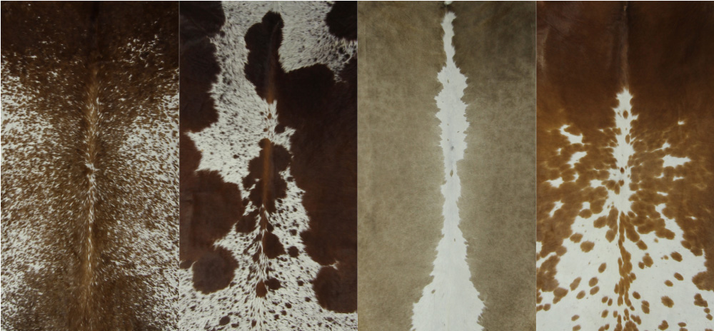 Nguni Cowhides_Brown white cover