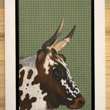 Nguni on Shweshwe 219 Framed