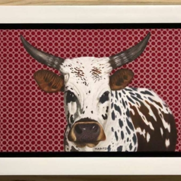 Nguni on Shweshwe 225 Framed